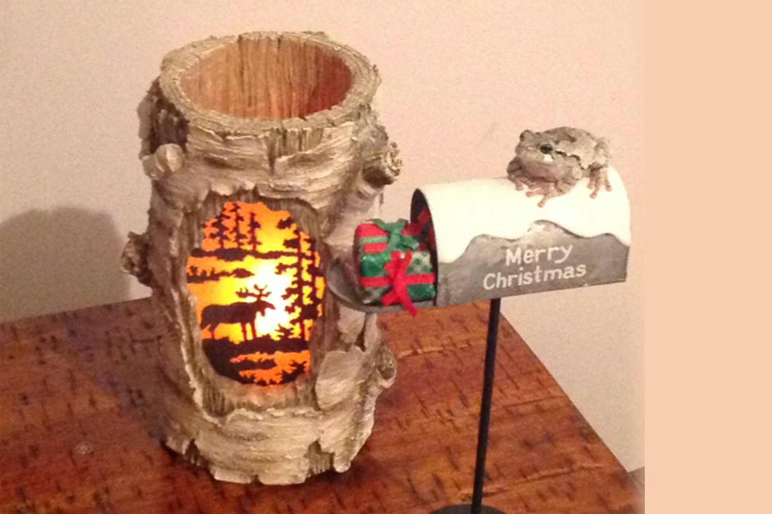 Todd the Toad has appeared to wish us all Merry Christmas!